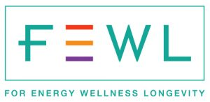 fewl logo | focused energy client | finance operations consultants